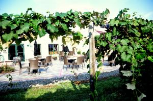 The patio from the vineyard nearing harvest time